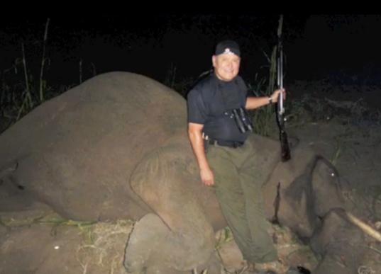 bob parsons elephant killing